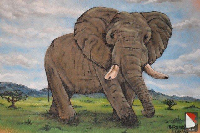 Elefant Graffiti sprayer St-Gallen